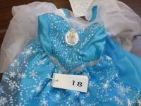 エルサの光るドレス(クリックで拡大)